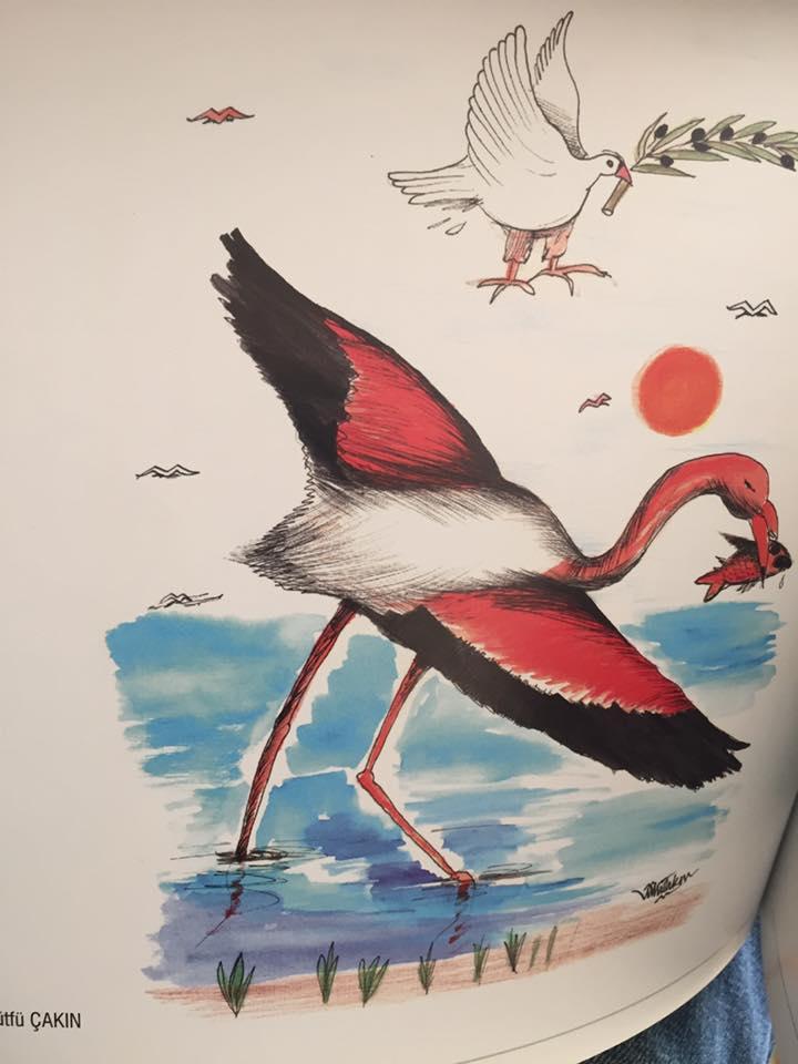Albümde yer alan karikatürüm.